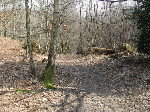 Approaching steep downhill drop to Chance Copse