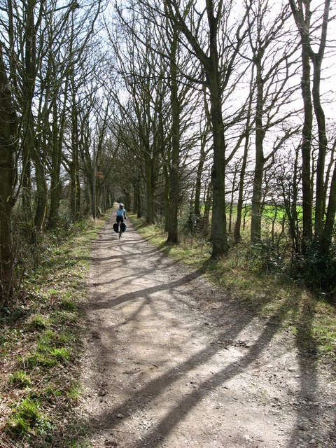 Cycling along a tree lined bridleway