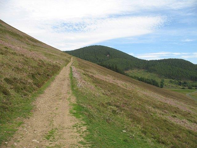 Path, Cademuir Hill