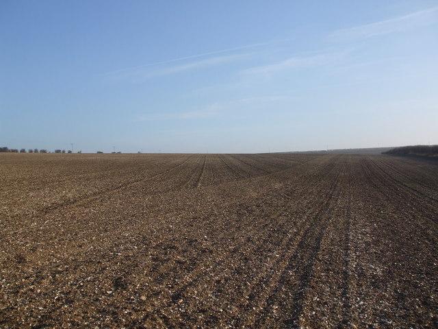 Fields near Wallis Grange