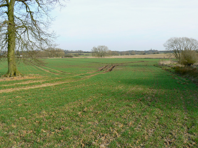 Farmland south of Whitehill Lane, near Grittenham