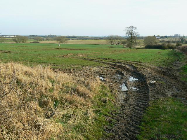 Farmland just south of Whitehill Lane, near Grittenham