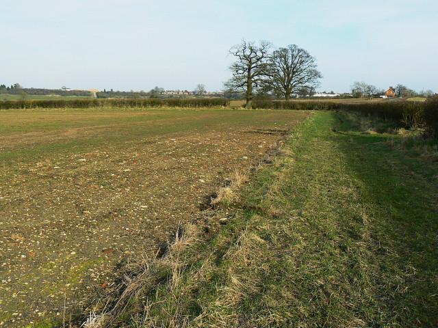 Field adjacent to Whitehill Lane, near Wootton Bassett