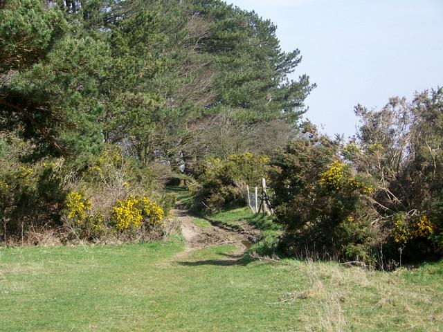 Jubilee Trail, Penbury Knoll