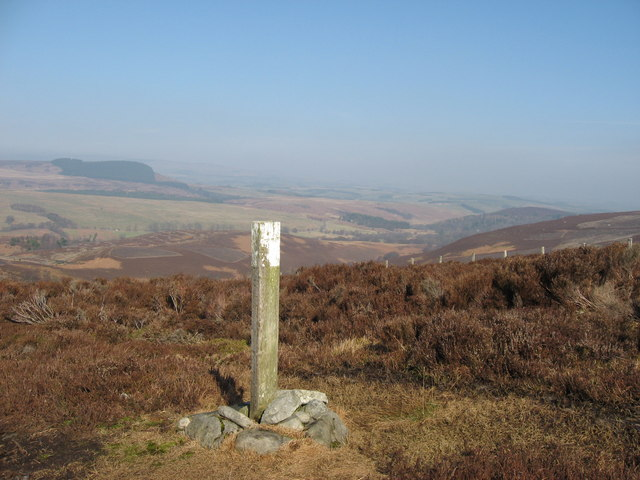 Waymarker near Darden Burn