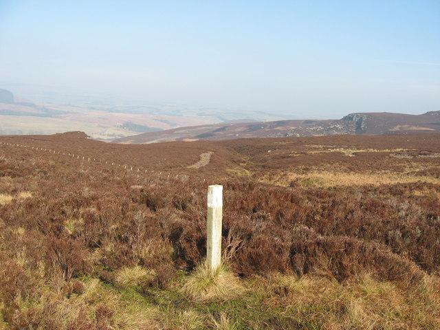 Waymarker near Darden Burn