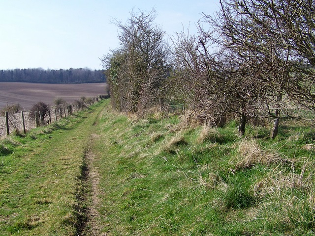 Bridleway, Blackbush Down