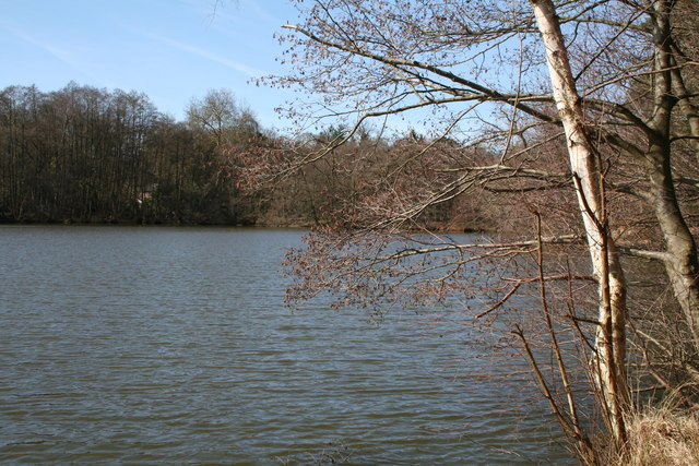 The Tarn, Puttenham Common