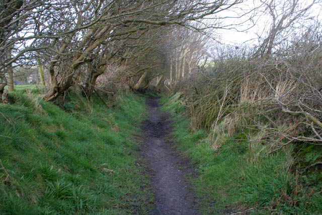Footpath to Overton