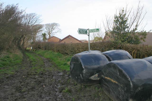 Muddy track, Overton