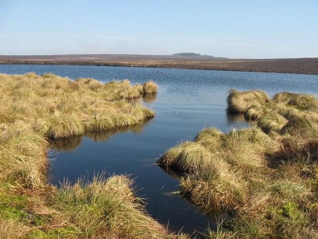 Darden Lough