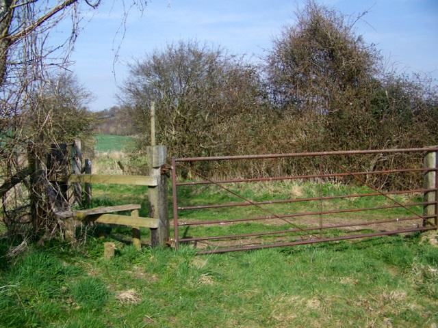 Stile and gate, Blackbush Down