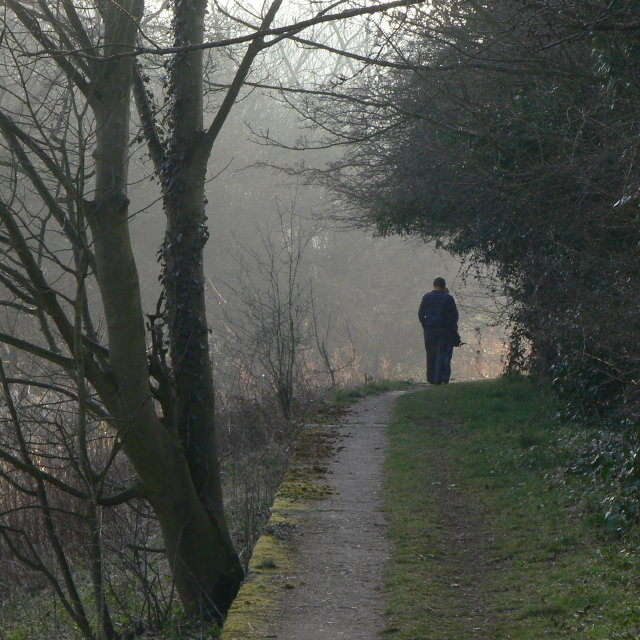 Along the Cromford Canal