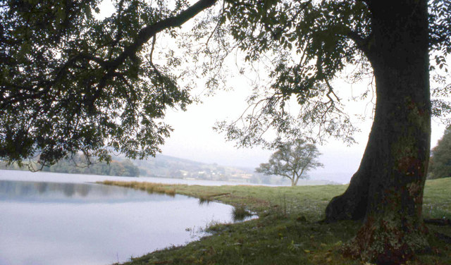 Early morning at the edge of  Elterwater