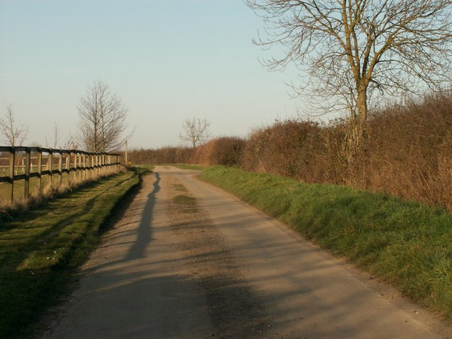 The road through East Green that leads to Freedom Farm Stud