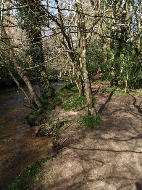 Banks of the Bovey