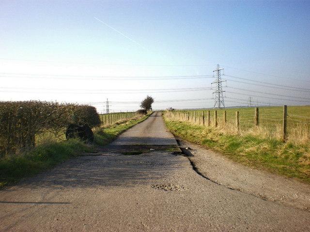 Side Beet Lane