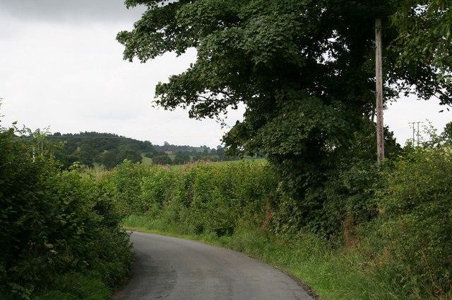 Lane towards Deffer Woods