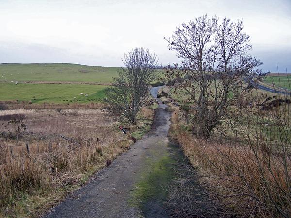 Old road towards Lyndale