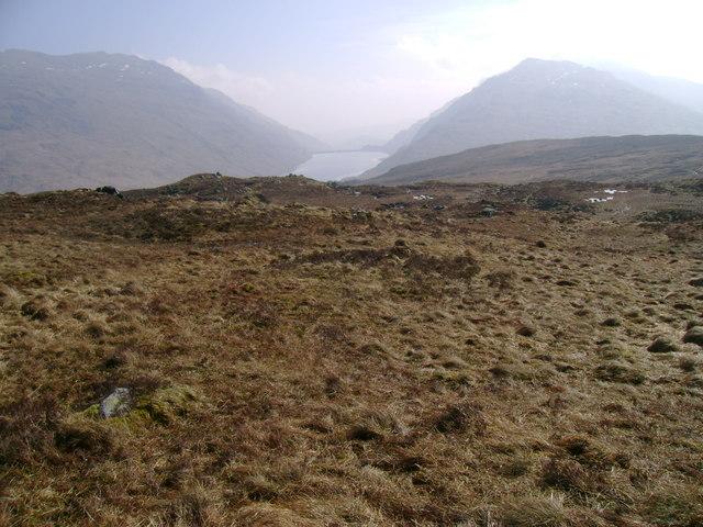 Rough grazing far above Loch Sloy