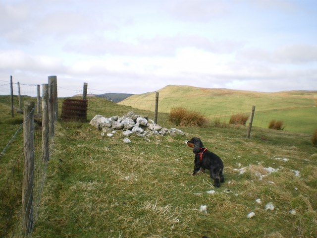 Near the summit of Garneddwen