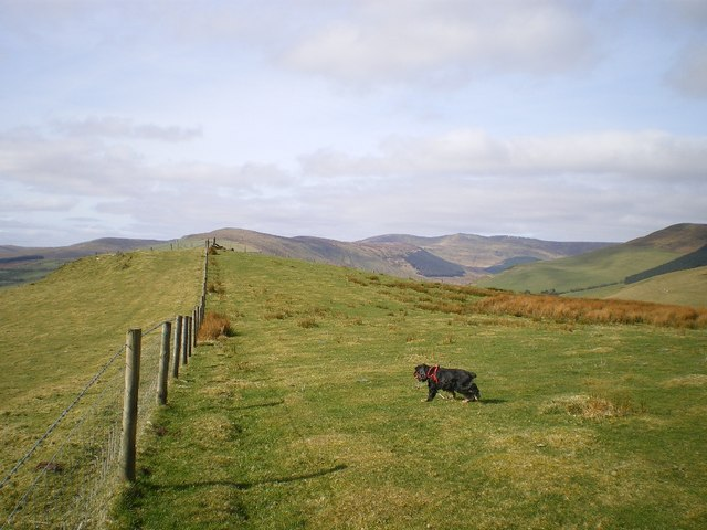 Along the summit ridge of Garneddwen