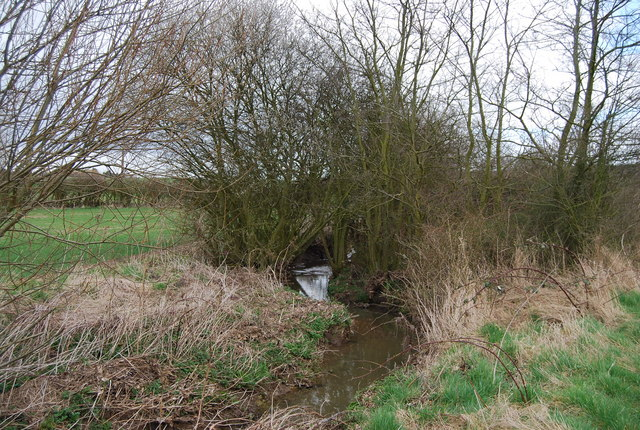 A stream south of Denstroude Lane