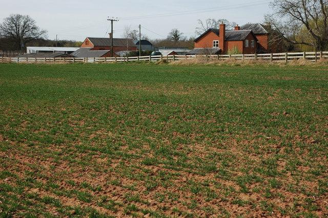 Little Netherton Farm, near Dymock