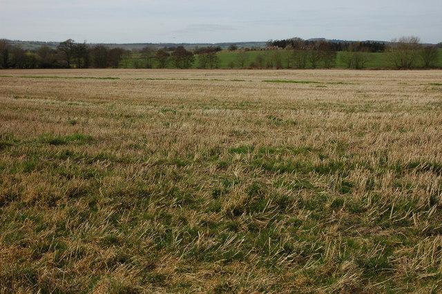 Farmland at Hallwood Green