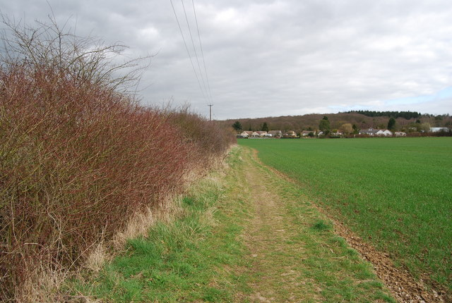 Footpath along a field edge off Denstroude Lane