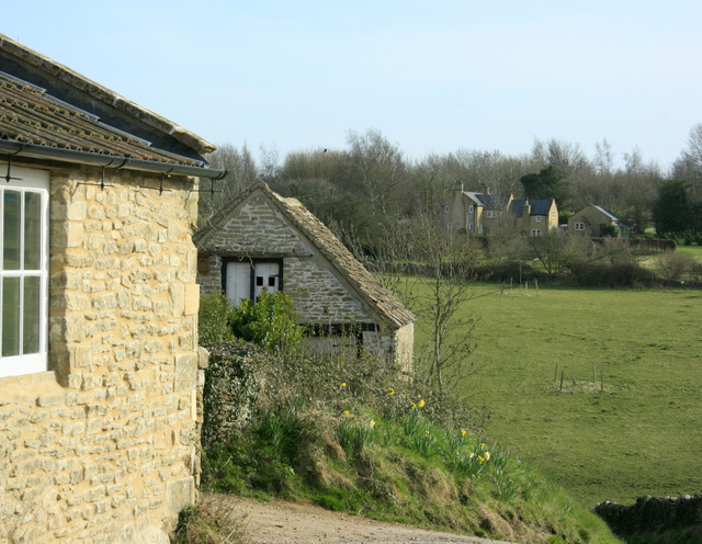 2009 : Harbingers of spring at West Kington Wick
