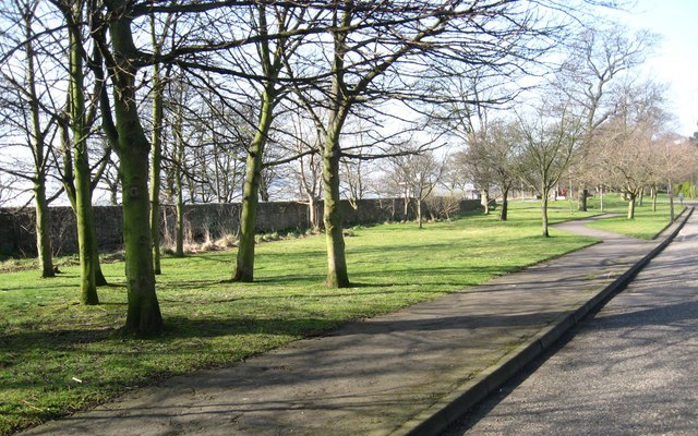 Greenfield area at Mortonhall Park Gardens