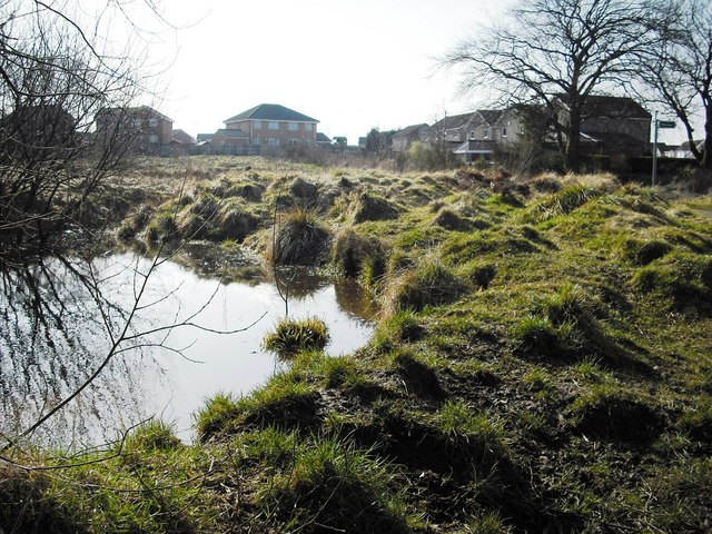 Pond beside footpath