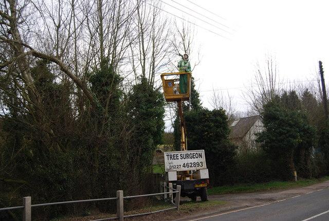 An interesting roadside advert near Red lion House, A290