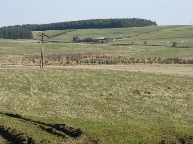 Looking towards Lilyburn from Fallhills