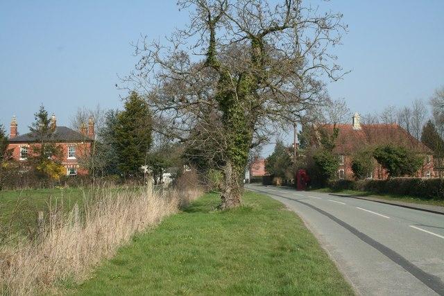 Sunny hamlet