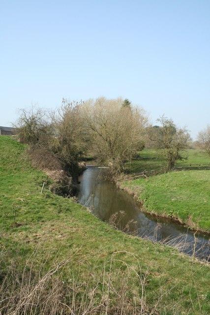 Sunny Sylvan Stream