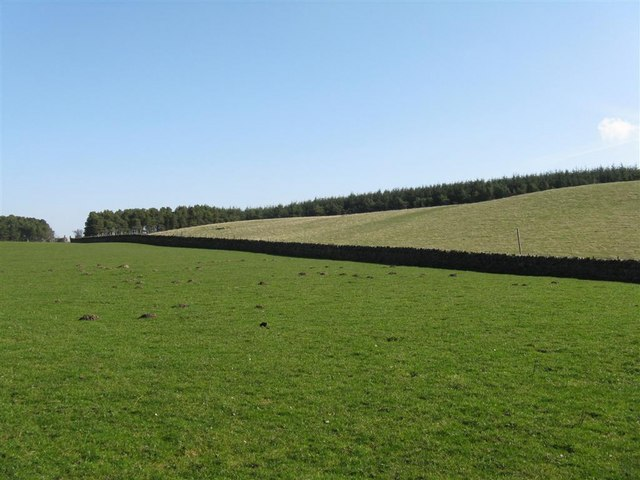 Fields at Upper Firth