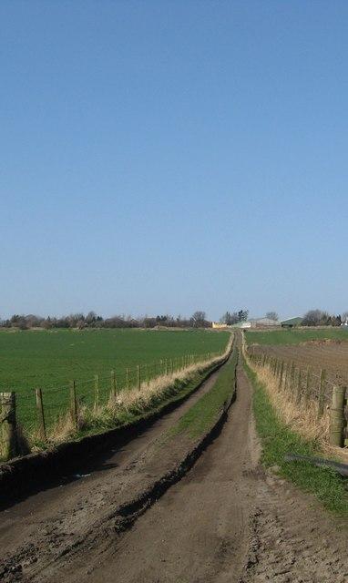 Farm track near Gilmerton