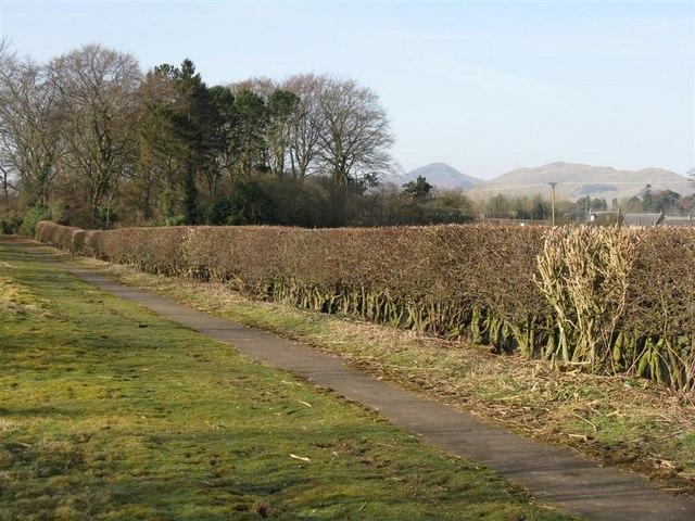 Footpath near Gowkley Moss