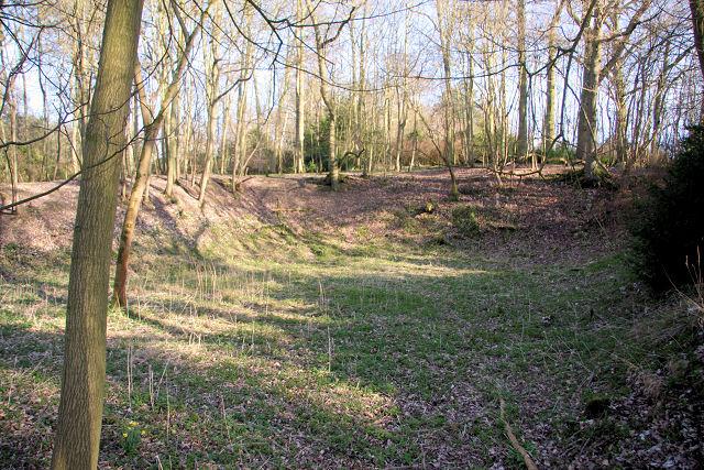 Former flint pit, Ickworth Park