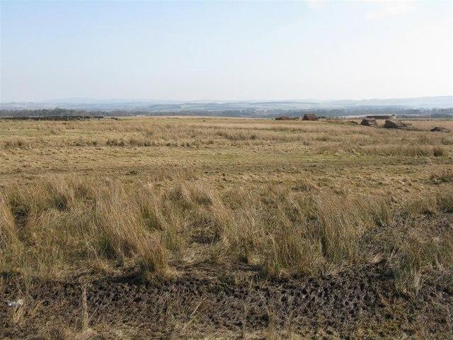 Cauldhall Moor