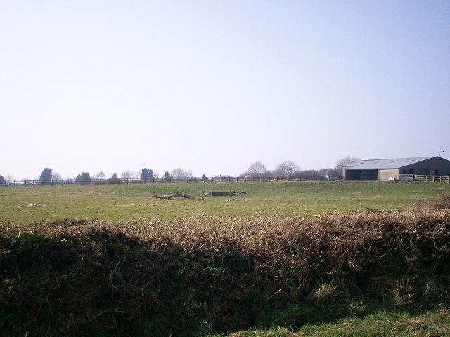 Field west of Stoney Road, Llanteg