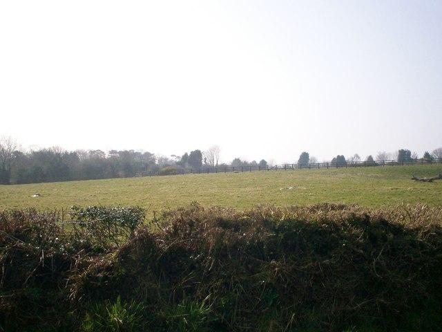Field SW of Stoney Road, Llanteg