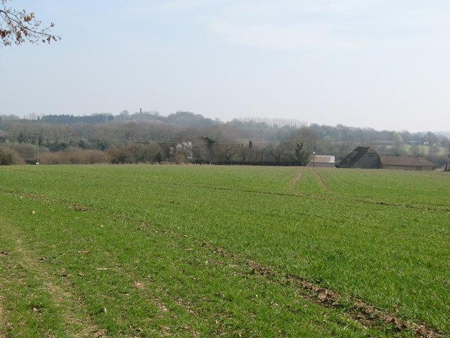 View across field to Pallingham Quay Farm