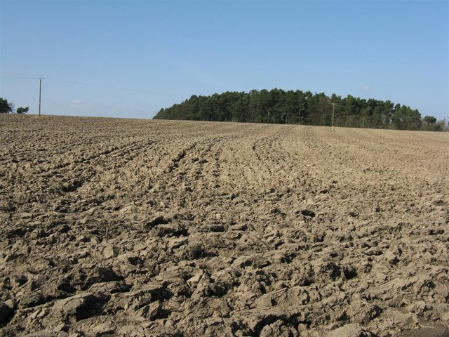 Ploughed field drying in the sun