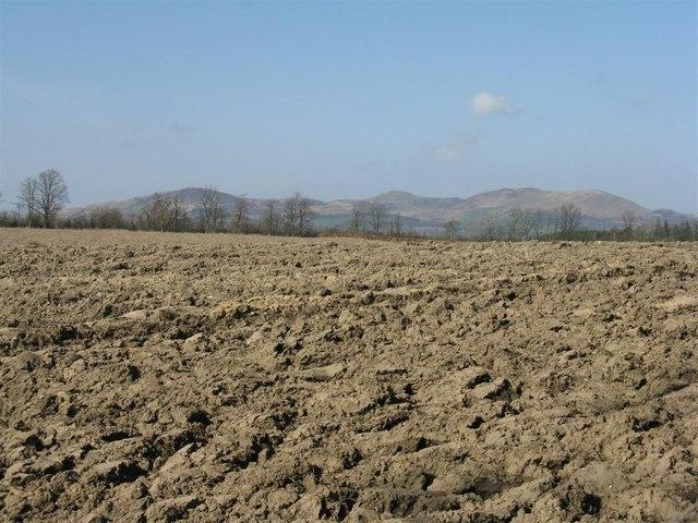 Heavy clay at Newbigging