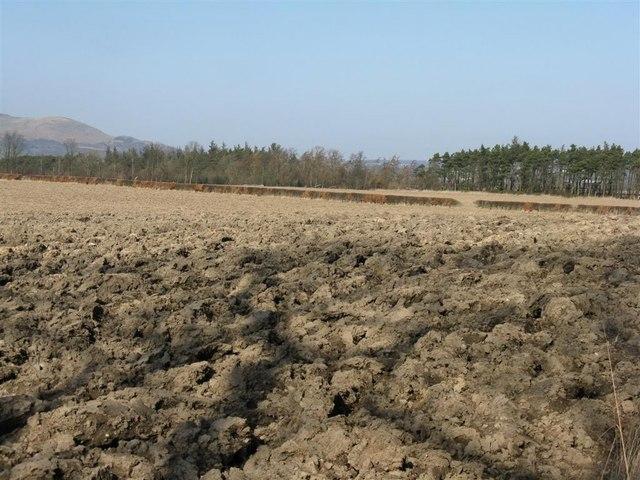 Farmland at Newbigging
