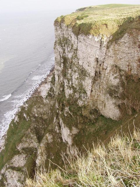 Buckton Cliffs