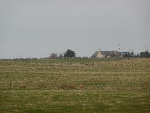 Looking across field to Bilbo Farm
